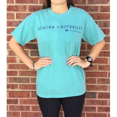 Seafoam Campus Comfort Colors