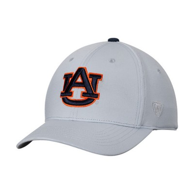 AU Silver Stretch Cap